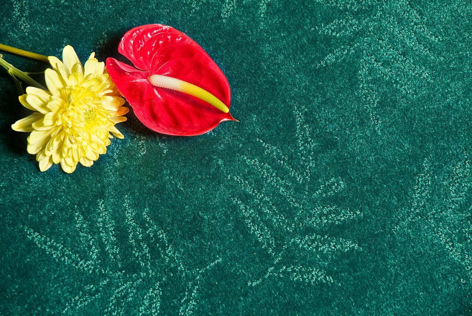 DSCF0017_green_carpet-with-flowers